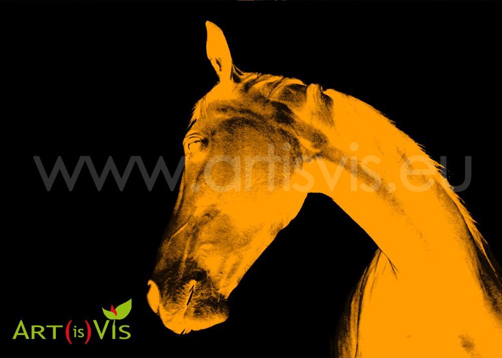 04_2012_cavallo