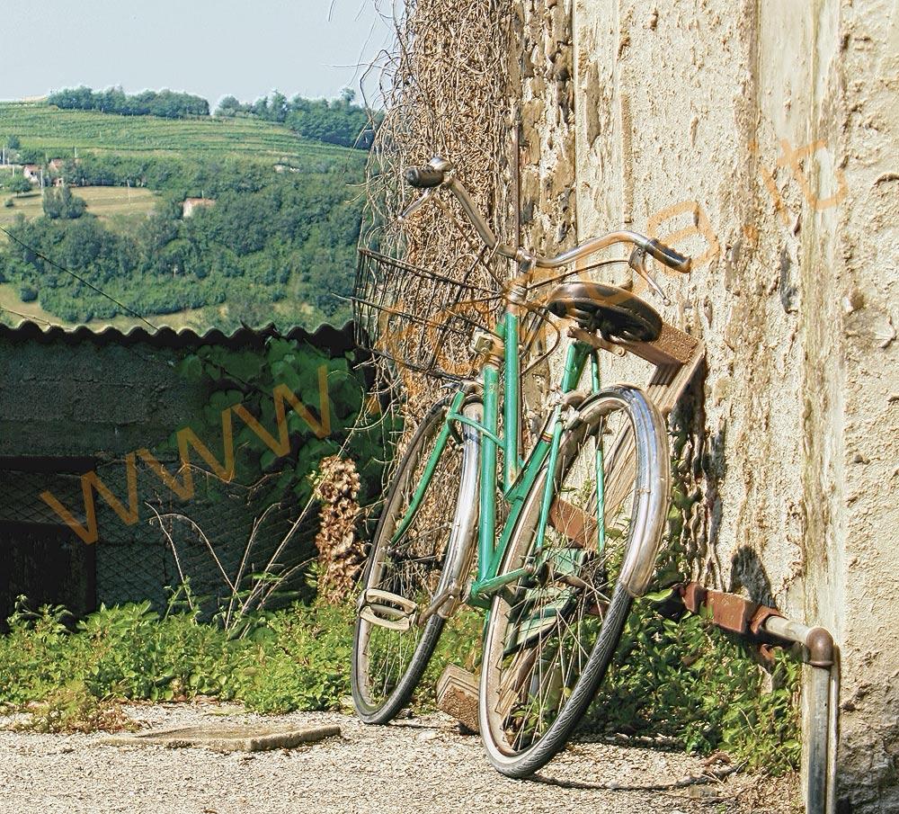 bici_sul_muro